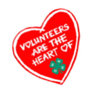 Volunteers are the heart of 4-H image